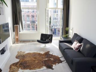 Just renovated, bright apartment by the Vondelpark - Amsterdam vacation rentals