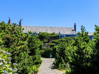 Quiet oceanfront getaway w/ocean views, walk to beach - dogs ok! - Waldport vacation rentals