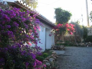 Mature tropical gardens with large private pool - Motril vacation rentals