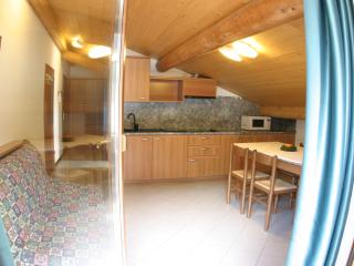 Nice Condo with Internet Access and Garden - Bormio vacation rentals