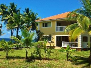 5 Bedroom Ocean Front Villa, Beach, Infinity Pool. - Constanza vacation rentals
