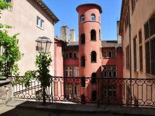 "LYON RENAISSANCE ""Côté Jardin"" Center and Vieux LYON - Lyon vacation rentals"