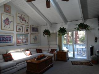 Lake Tahoe (North Shore) Townhouse - Light, Bright - Incline Village vacation rentals