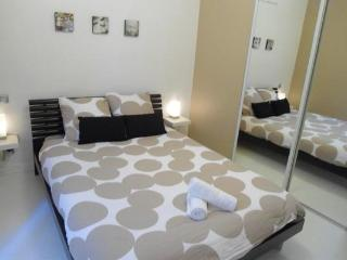 Beautiful 1Bd Apartment in the Heart of Nantes.Castle, TGV station. - Nantes vacation rentals