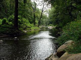 Charming Creekside Apartment with Cozy Fireplace - Kennett Square vacation rentals