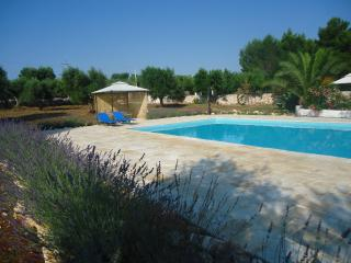 Apulia - Italy - Trullo of Paradise with pool - Ceglie Messapica vacation rentals