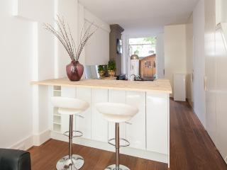 365-Inn apartment Amsterdam - Amsterdam vacation rentals
