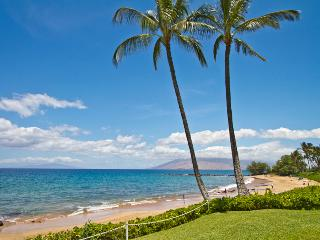 Wailea Elua 2BR Oceanview Condo, Beachfront Resort - Wailea vacation rentals