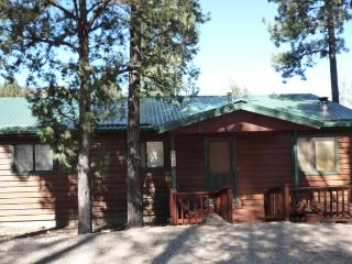 Sun Mountain Cabin - 3 Bed 3 Bath Hot Tub Cabin - Rudioso vacation rentals