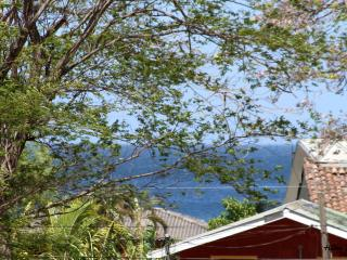 "Oceannestbb ""more than a bed and breakfast"" - Gulf of Papagayo vacation rentals"