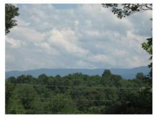 Walk to Historic Downtown Greeneville TN - Johnson City vacation rentals