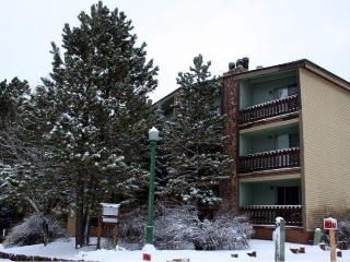 Spacious!  2 Bed 2 Bath Ski & Bike Condo in Angel - Angel Fire vacation rentals