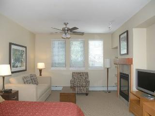 Cozy and Comfortable Studio with a slopeside location steps to the elevator. - Winter Park vacation rentals