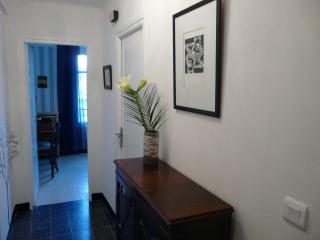 Magnificent 3 bedroom apartment in Vieux Nice - Nice vacation rentals