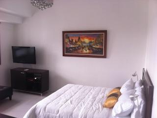 Cozy condo in Fort BGC - ICON A - Taguig City vacation rentals