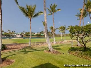 W7-FV N1 - Waikoloa vacation rentals
