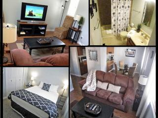 FREE 7th Night! HOUSE. WiFi. W&D. Cable. Yard. - Eagle River vacation rentals