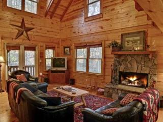 Dawg Paddle - Morganton Chattahoochee National Forest - Blue Ridge vacation rentals
