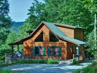 Laurel Ridge - Mineral Bluff - Mineral Bluff vacation rentals