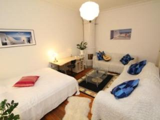 Large Apart. in the heart of Södermalm - Stockholm County vacation rentals