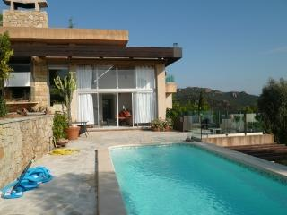 Modern architectural  villa with pool  seaview - Cannes vacation rentals