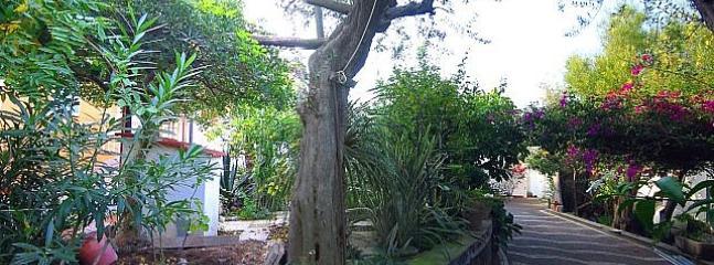Casa Miriam B - Image 1 - Sorrento - rentals