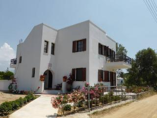 Iliana by the beach - Naxos, Cyclades, Greece  (Aegean island in Greece) - Naxos vacation rentals