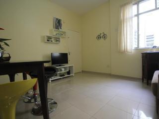 ★Laranjeiras 805 - Rio de Janeiro vacation rentals