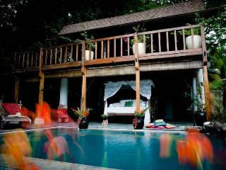 Casa Java, Sleeps 6 - Santa Teresa vacation rentals