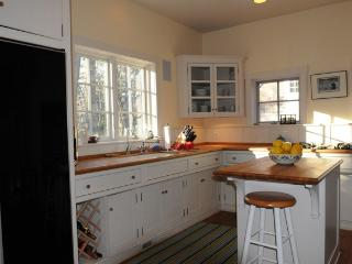 Lakeside Luxury - New Buffalo vacation rentals