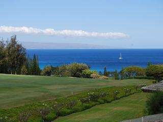 Charming 1 bedroom House in Kapalua with Internet Access - Kapalua vacation rentals