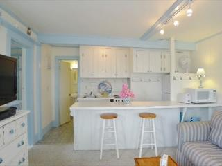 Chatham first floor condo facing Lighthouse Beach! - Chatham vacation rentals