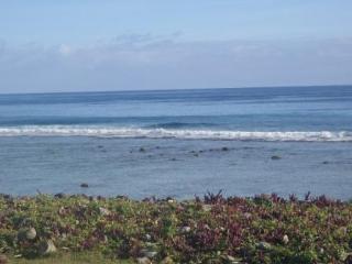 POUARA VILLA -- Absolute Beachfront Sea Views - Avarua vacation rentals