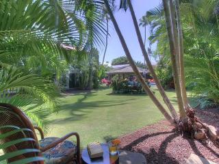 Aina Nalu D-108 - Maui vacation rentals