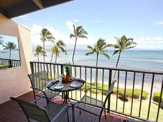 2 bedroom Apartment with Internet Access in Wailuku - Wailuku vacation rentals
