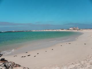 El Carmen - El Cotillo vacation rentals