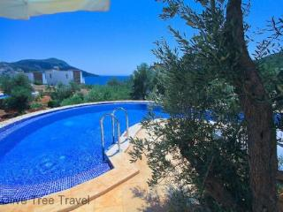 Likya View Villa - Phoebe - - Kalkan vacation rentals