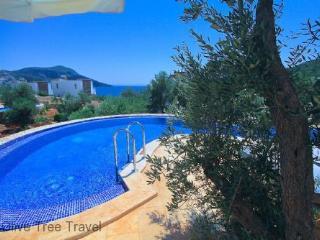Likya View Villa - Phoebe - - Turkish Mediterranean Coast vacation rentals