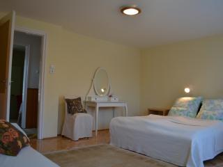 Beautiful 3 bedroom Zalakaros Chalet with Television - Zalakaros vacation rentals