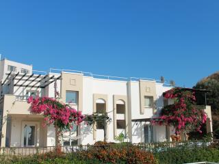 Nice Condo with Internet Access and Dishwasher - Gumusluk vacation rentals