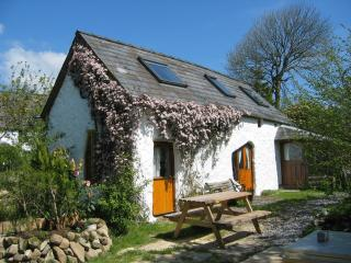 Nice Cottage with Internet Access and Television - Mynachlogddu vacation rentals