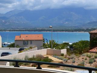 appartement Calvi , 2 pièces, vue mer ,  WIFI - Calvi vacation rentals