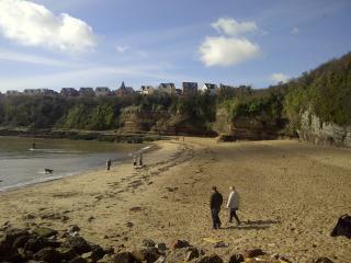 Luxury  beach/ coastal townhouse -Cardiff 25 mins - Cardiff vacation rentals
