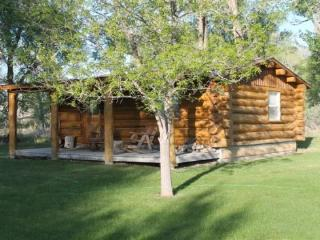 Buffalo Ranch Cabin - Cody vacation rentals