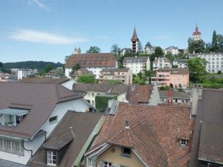 Old Town Apartment Cysat - Lucerne vacation rentals