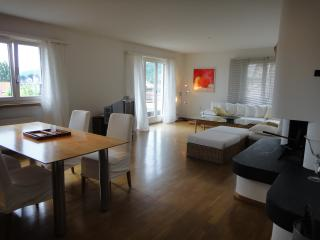 2 bedroom Condo with Internet Access in Lucerne - Lucerne vacation rentals