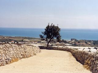 Monolocale panoramico mare/campagna.Animali ok - Marina di Ragusa vacation rentals