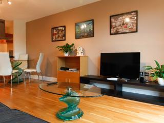London Spacious Apartment - London vacation rentals