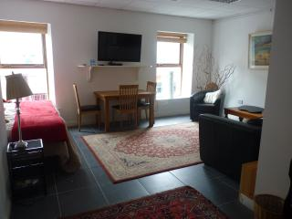 Sligo Town Property Rental Apartment Sat to Sat. - County Sligo vacation rentals