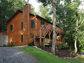 Crescent Dream a great family retreat just minutes from the Parkway - Boone vacation rentals